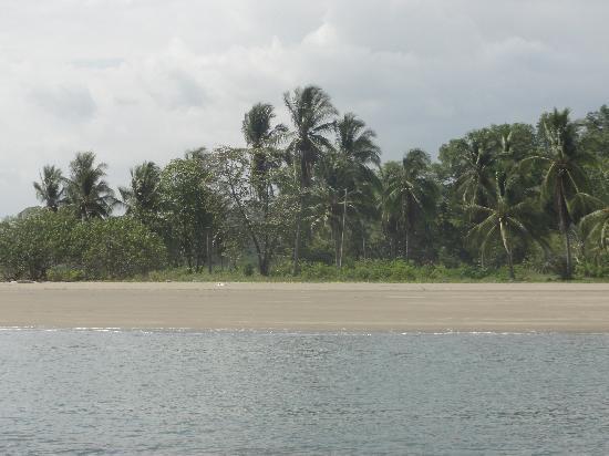Villas Hermosas: Beach on the Quad tour