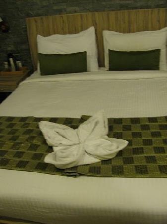 Binsar, India: Room