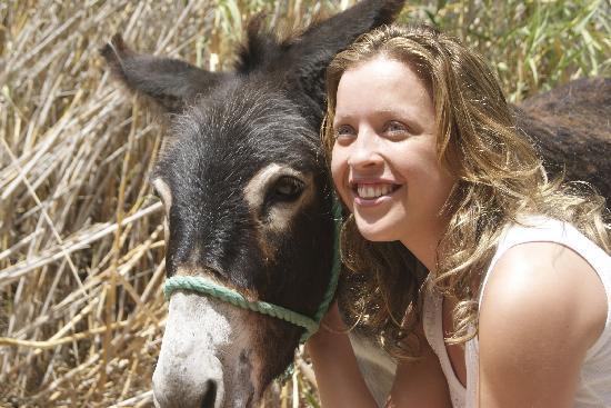 Animal Encounters -  Escape Outdoor & Adventures - Private Tours : Gran Canaria Rocky Mountain Adventure
