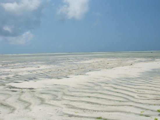 Jacaranda Beach Resort: Bassa marea
