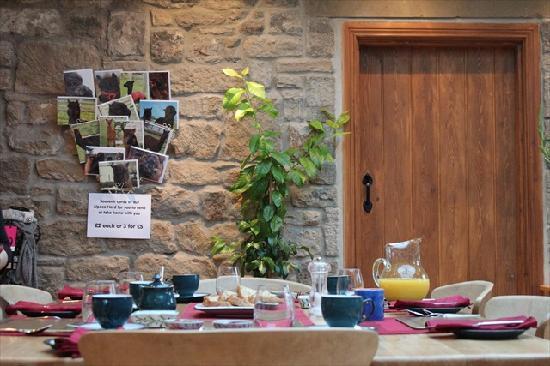 Fairshaw Rigg: Breakfast table