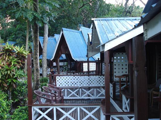 คอรัลวิว ไอส์แลนด์ รีสอร์ท: The section where I stayed