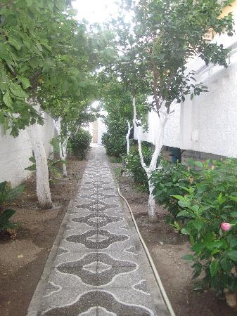 International Hotel: Beautiful mosaic walkway at the side of the hotel leading to the pool