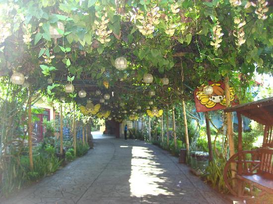 Sampaguita Gardens: pathway