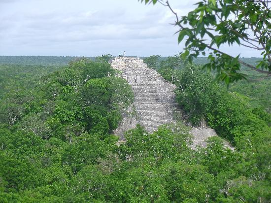 Cozumel (เกาะโกซูเมล), เม็กซิโก: Calakmul site in the jungle.