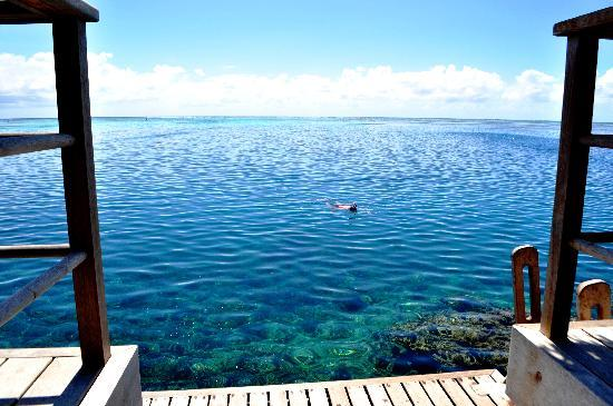InterContinental Moorea Resort & Spa: View from our bungalow