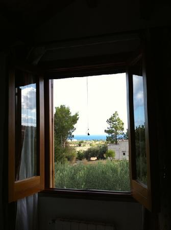 View of the Sea from my room at Uliveto Guest House