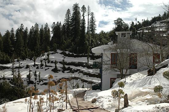 Kanatal, Ấn Độ: Snow Times