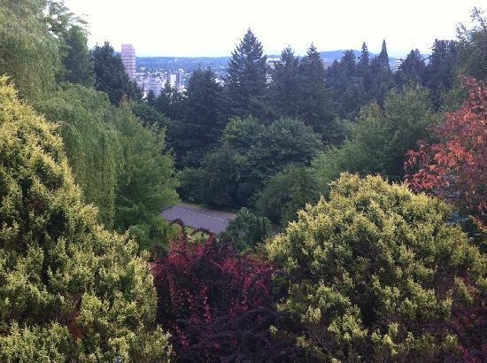 International Rose Test Garden: Aussicht vom Rose Testen Garten auf Portland