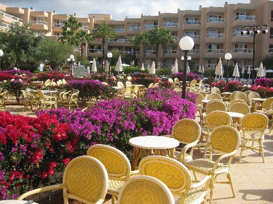 Tropic Garden Aparthotel: Hotel Gardens