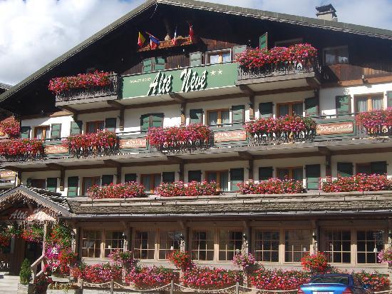 Alte Neve Chalet Hotel: vue de l'hôtel