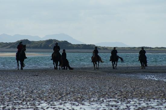 Anglesey Riding Centre: Beach ride