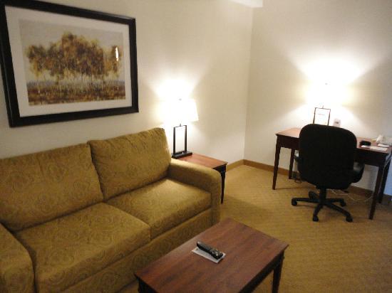 Holiday Inn Express Hotel & Suites Brockville : salon