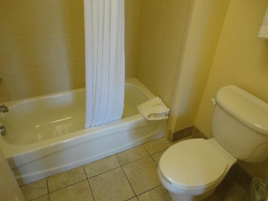 Staybridge Suites Rochester University: salle de bains