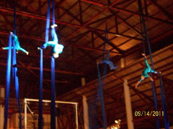 Dreams Punta Cana Resort & Spa: Circus Show, best show of the week!