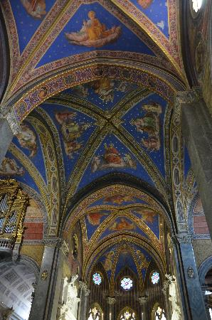 Santa Maria Sopra Minerva: View of the Ceiling