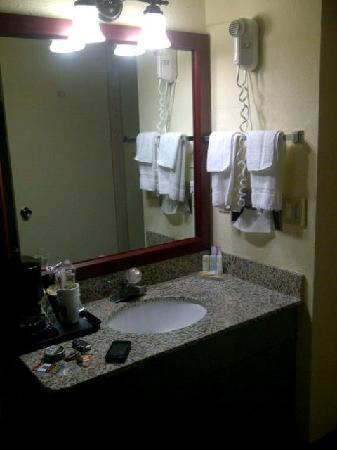 Quality Inn & Suites River Suites : Vanity