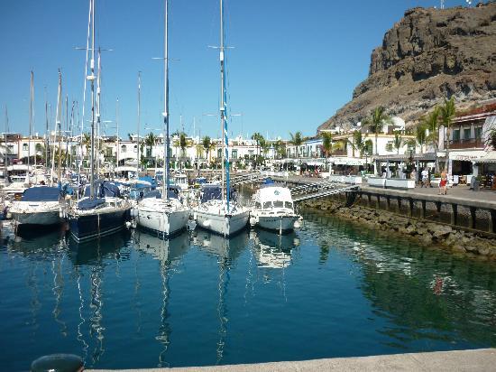 Cordial Mogan Playa : Marina