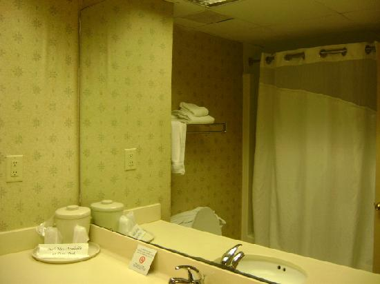 Holiday Inn Express Morehead City: Dark Bathroom, shower was much darker