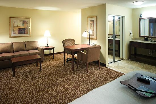 Hampton Inn & Suites Rochester - North: Suite sitting area