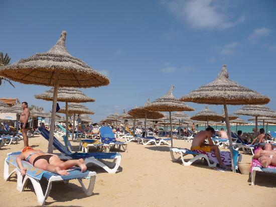 Safira Palms Hotel & Spa: Hotel Beach