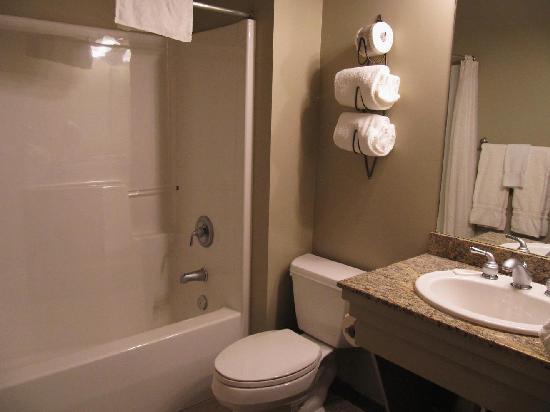 Podollan Inn Room 308 bathroom