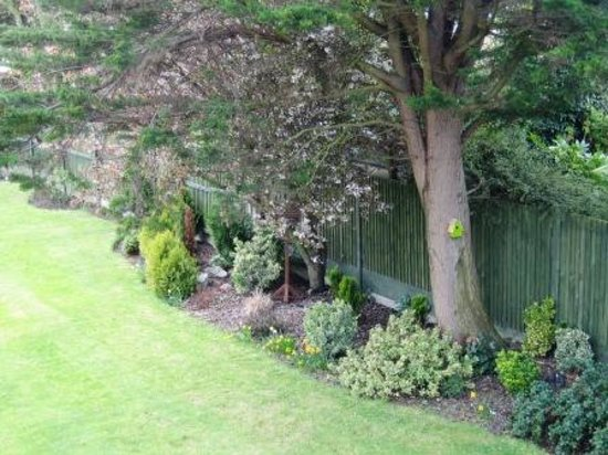 Whitstable Bay Bed and Breakfast : Garden View