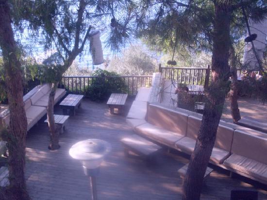 Blue Dreams Resort: tea garden