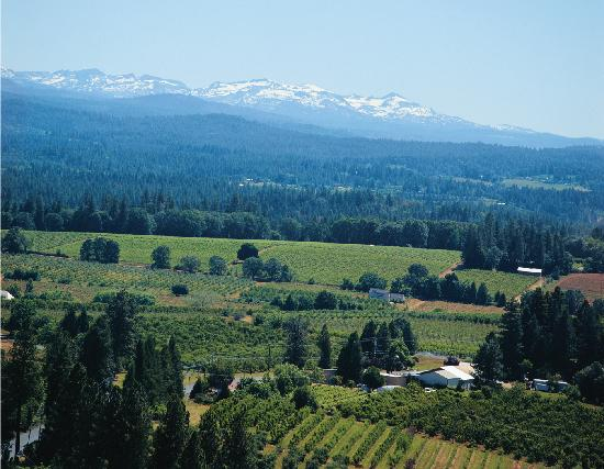 El Dorado Wine Country Picture Of Placerville