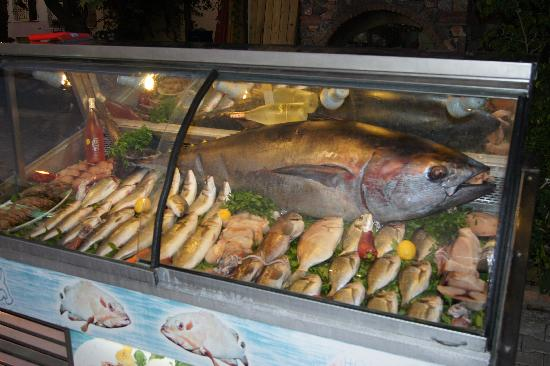 Captain Hook's Seafood Restaurant : Selection of Fresh Fish.