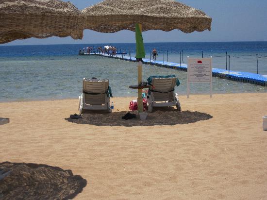 Baron Resort Sharm El Sheikh: beach and pontoon