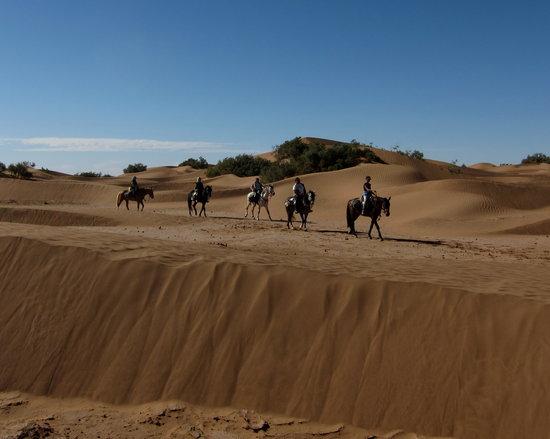 Ranch de Diabat: a cheval entre dune
