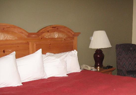 Country Inn & Suites By Carlson, Mount Morris : Comfy