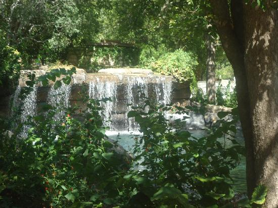 Hyatt Regency Hill Country Resort and Spa: Beautiful relaxing waterfalls!