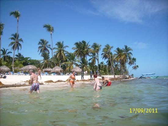 Natura Park Beach Eco Resort & Spa: praia do hotel