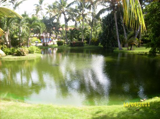 Natura Park Beach Eco Resort & Spa: hotel