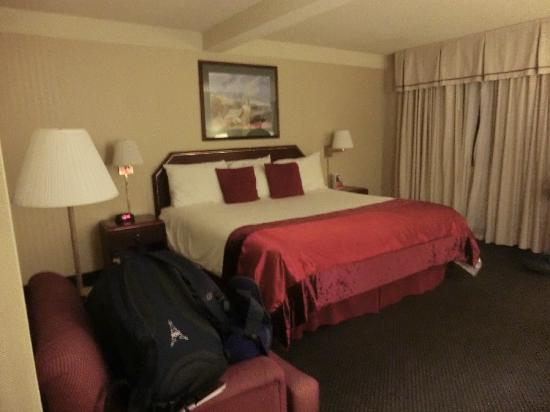 Ramada Denver Downtown: Plenty of room and good black-out curtains