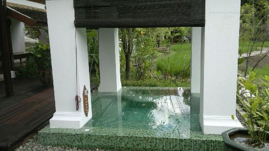 The Dhara Dhevi Chiang Mai: Plunge pool in the rear of villa