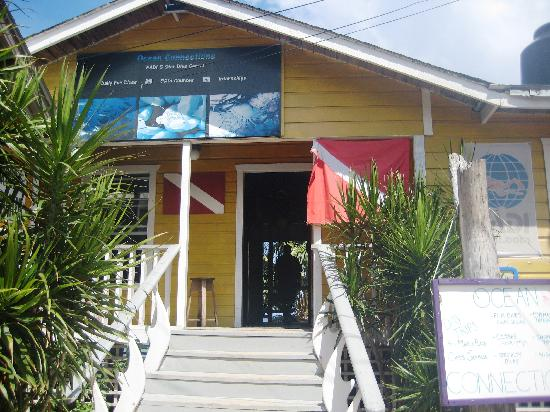 Ocean Connections Water Sports: OC shop front