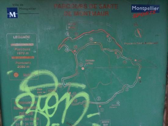 parcours bois de Montmaur.