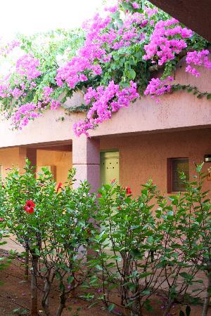 Zorbas Village and Aqua Park: rooms
