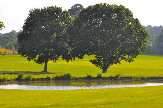 Coworth Park - Dorchester Collection: loch