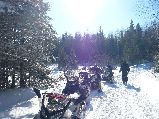 Motel Ours Bleu : Snowmobiletrip