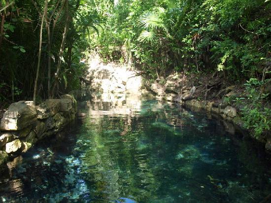 Occidental Grand Xcaret All Inclusive Resort: rivière xcaret