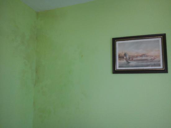 Sinbad Hostel : muro della stanza