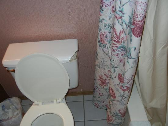 Table Rock Resorts at Indian Point: Broken Toilet cover