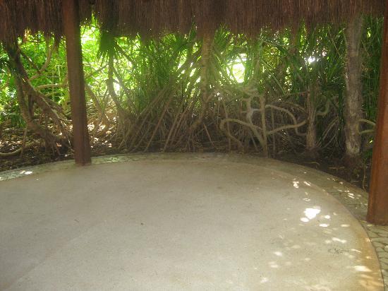 Live Aqua Beach Resort Cancun: Yoga area