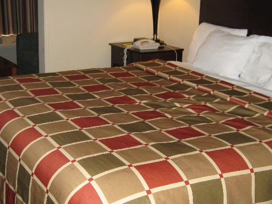 Super 8 New Iberia: Single Room; 1 King size bed.