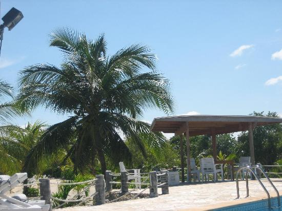 Laguna Beach Resort: Just one option