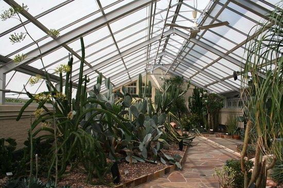 Howard Peters Rawlings Conservatory and Botanic Gardens of Baltimore:                   Desert enviroment